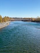 Views of Calgary